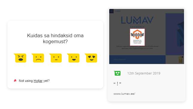 Hotjar incoming feedback näidis